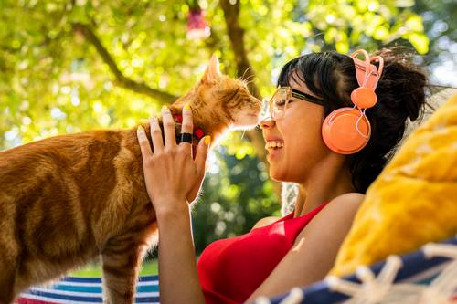 猫ノミによる皮膚炎などの症状はあなどれない!人間に症状をもたらす可能性もある?