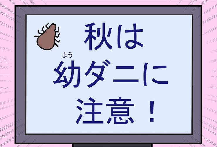 【第9話】あなたの秋はどんな秋?・・・/体験マンガ「タレ目猫そむのブラベクト体験記!? ~そむの気持ち~ 」