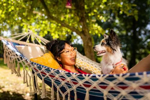 犬の生理はいつからいつまで続く?生理期間・発情周期に関する基礎知識と避妊手術の重要性について