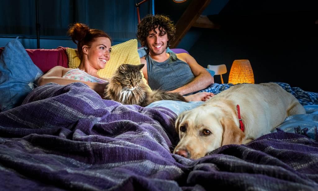 犬猫に噛まれると発症する危険性のあるパスツレラ症とは?症状・特徴・治療法・予防法などを解説