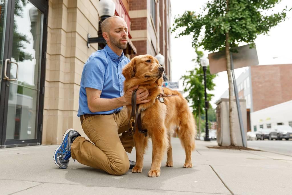 犬の耳掃除は必要?正しい方法や頻度・外耳炎などの気をつけるべきトラブルについて解説